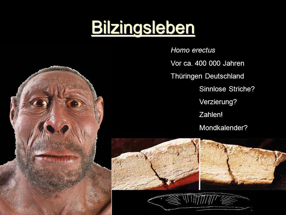 Bilzingsleben Homo erectus Vor ca. 400 000 Jahren Thüringen Deutschland Sinnlose Striche? Verzierung? Zahlen! Mondkalender?