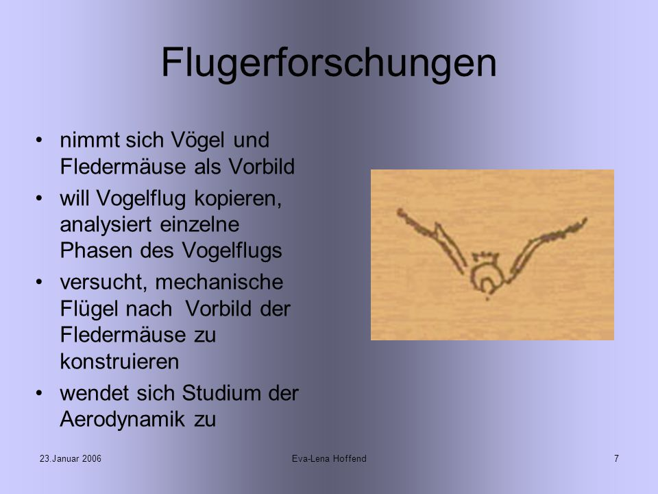 23.Januar 2006Eva-Lena Hoffend7 Flugerforschungen nimmt sich Vögel und Fledermäuse als Vorbild will Vogelflug kopieren, analysiert einzelne Phasen des Vogelflugs versucht, mechanische Flügel nach Vorbild der Fledermäuse zu konstruieren wendet sich Studium der Aerodynamik zu