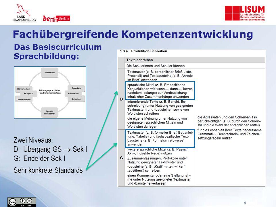 Das Basiscurriculum Sprachbildung: Zwei Niveaus: D: Übergang GS  Sek I G: Ende der Sek I Sehr konkrete Standards 9 Fachübergreifende Kompetenzentwicklung