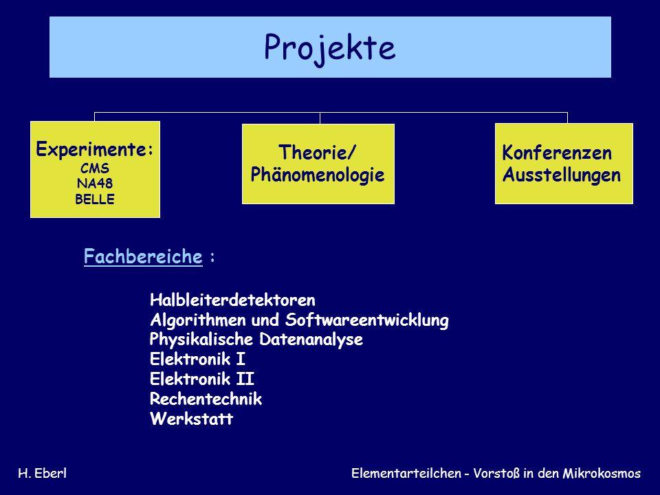 H. EberlELEMENTARTEILCHEN – Vorstoß in den Mikrokosmos Theorie/Phänomenologie