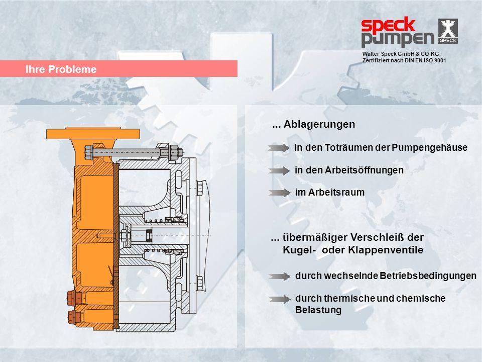 Walter Speck GmbH & CO.KG. Zertifiziert nach DIN EN ISO 9001 Ihre Probleme... Ablagerungen in den Arbeitsöffnungen in den Toträumen der Pumpengehäuse.