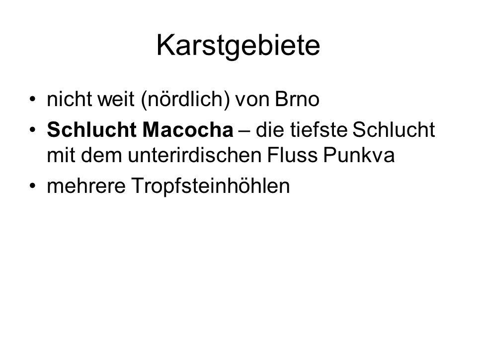 Karstgebiete nicht weit (nördlich) von Brno Schlucht Macocha – die tiefste Schlucht mit dem unterirdischen Fluss Punkva mehrere Tropfsteinhöhlen