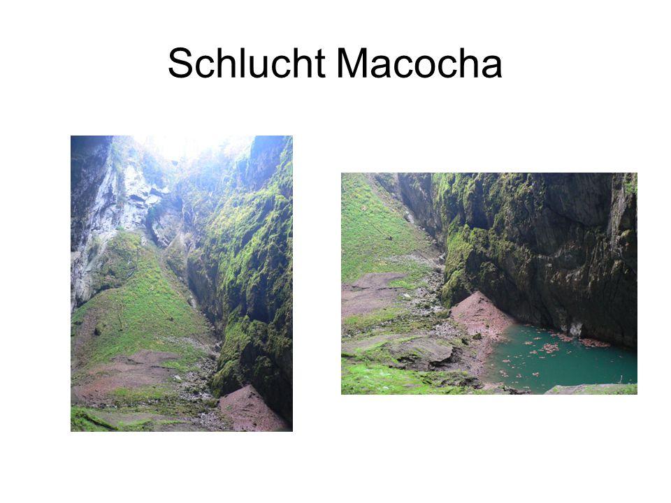 Schlucht Macocha