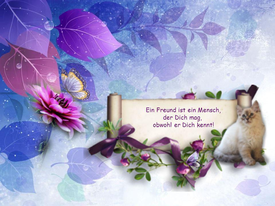 Ein Freund ist ein Mensch, der Dich mag, obwohl er Dich kennt!