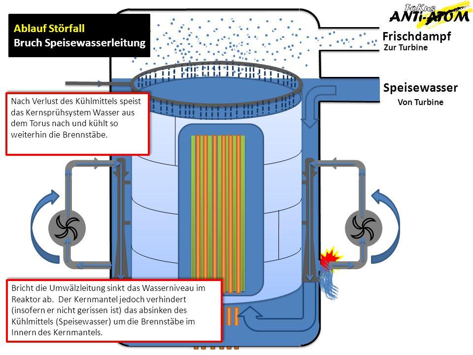 Frischdampf Zur Turbine Von Turbine Ablauf Störfall Bruch Speisewasserleitung Speisewasser Nach Verlust des Kühlmittels speist das Kernsprühsystem Wasser aus dem Torus nach und kühlt so weiterhin die Brennstäbe.