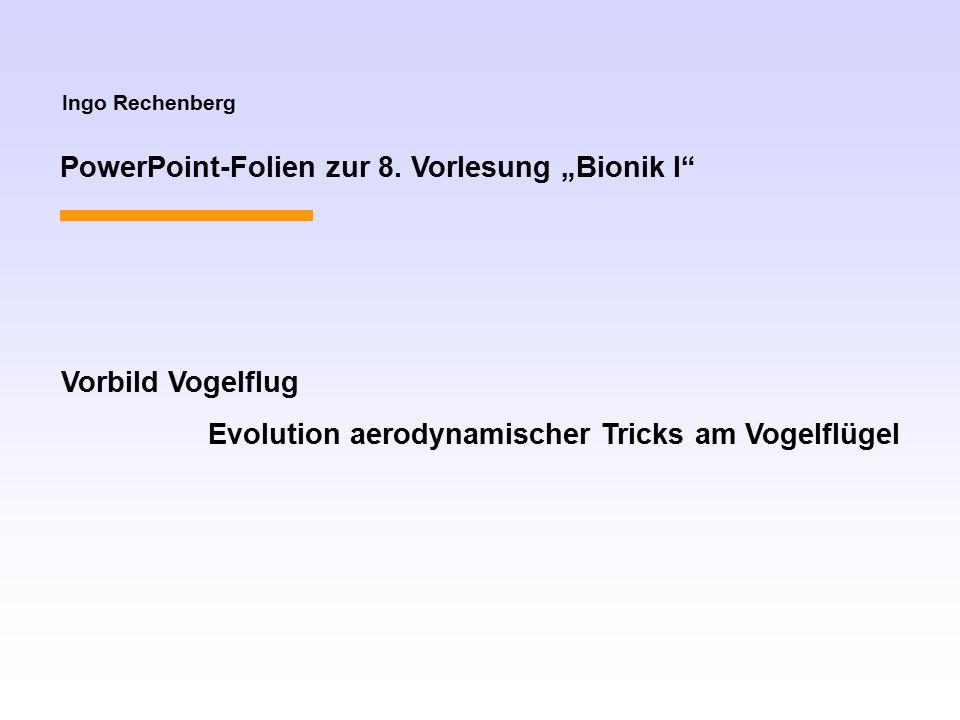 """Ingo Rechenberg PowerPoint-Folien zur 8. Vorlesung """"Bionik I"""" Vorbild Vogelflug Evolution aerodynamischer Tricks am Vogelflügel"""