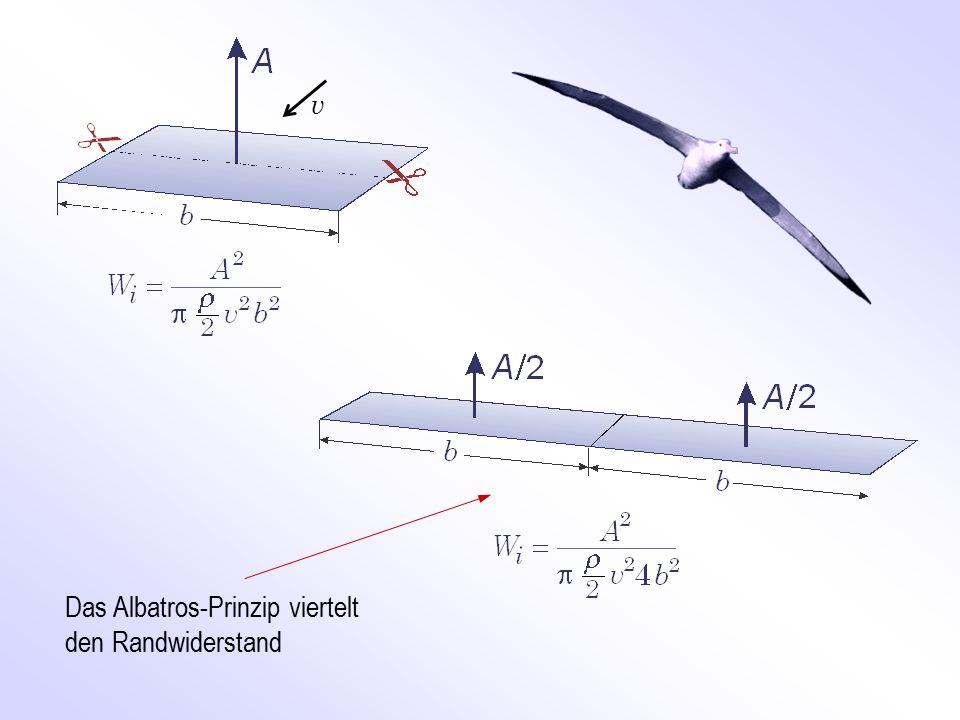 Das Albatros-Prinzip viertelt den Randwiderstand v