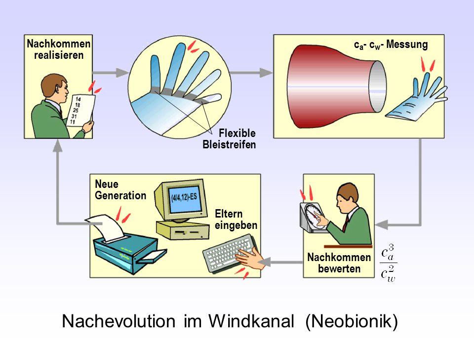 Nachevolution im Windkanal (Neobionik) Neue Generation c a - c w - Messung Flexible Bleistreifen Nachkommen realisieren Eltern eingeben Nachkommen bew