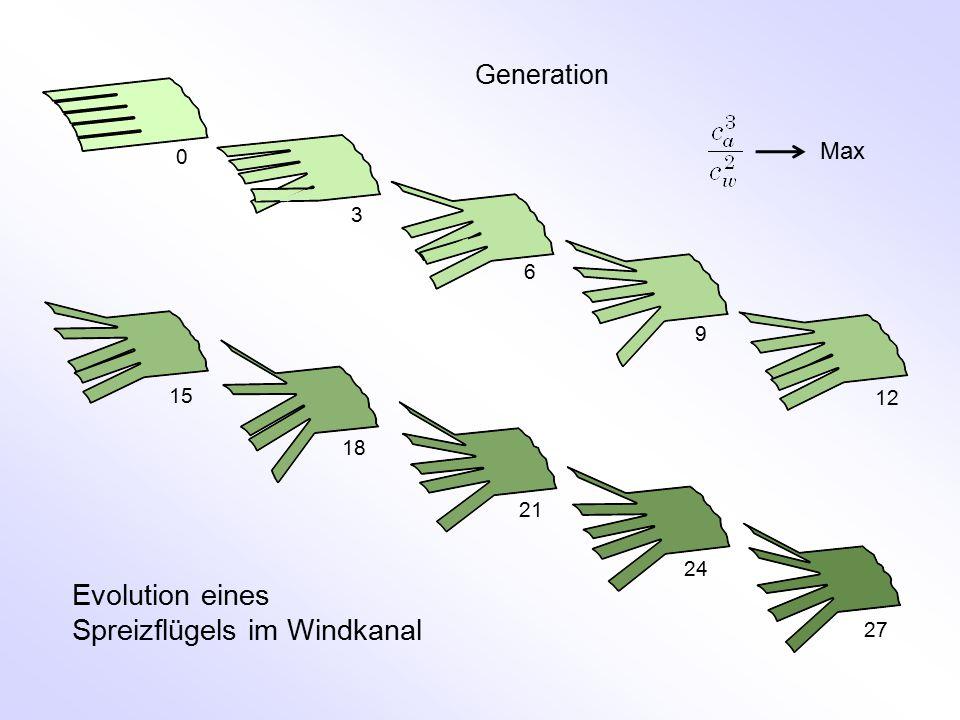 Generation 0 3 6 9 12 15 18 21 24 27 Evolution eines Spreizflügels im Windkanal Max