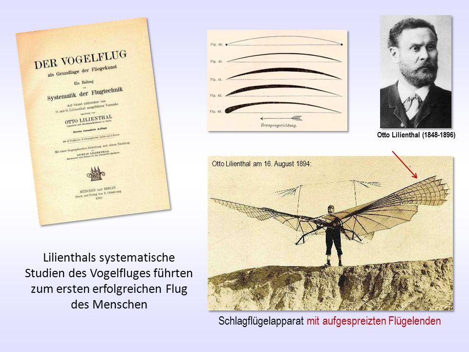Otto Lilienthal (1848-1896) Lilienthals systematische Studien des Vogelfluges führten zum ersten erfolgreichen Flug des Menschen Otto Lilienthal am 16.
