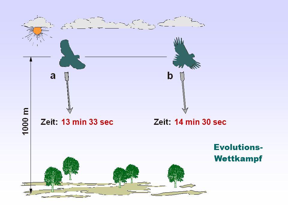 Evolutions- Wettkampf 13 min 33 sec14 min 30 sec