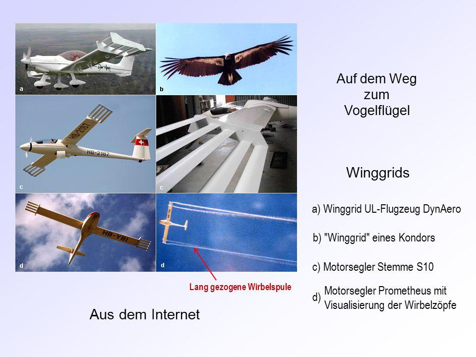 Aus dem Internet a) Winggrid UL-Flugzeug DynAero b) Winggrid eines Kondors c) Motorsegler Stemme S10 Motorsegler Prometheus mit Visualisierung der Wirbelzöpfe d) Winggrids Auf dem Weg zum Vogelflügel Lang gezogene Wirbelspule