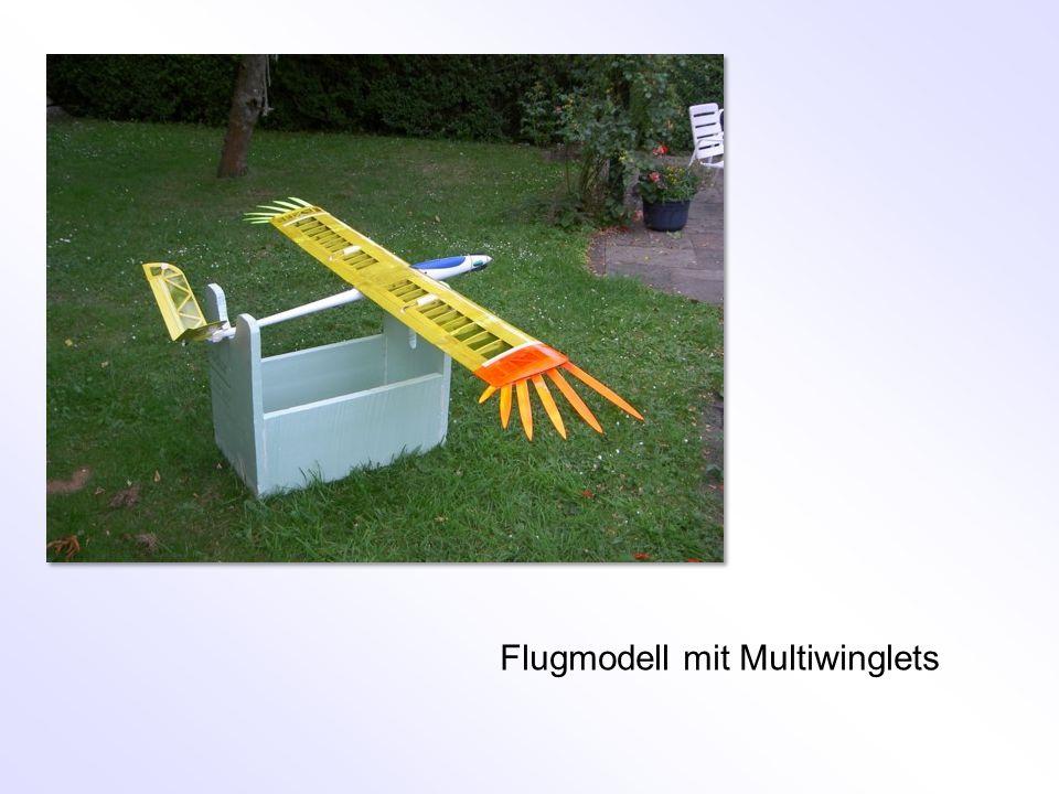 Flugmodell mit Multiwinglets