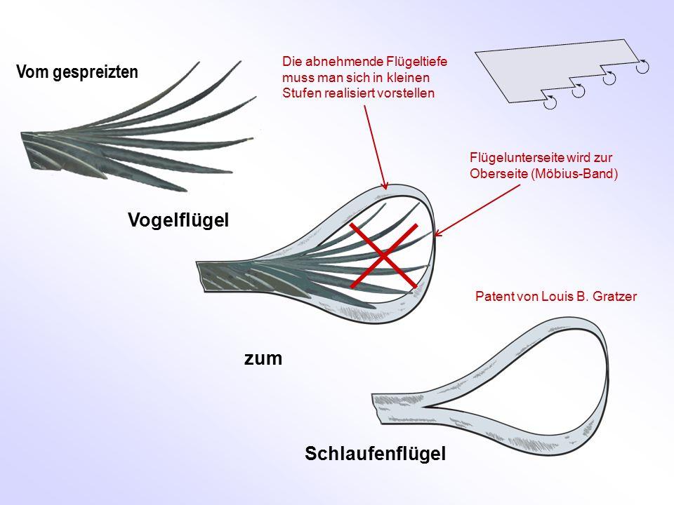 Vom gespreizten Vogelflügel Schlaufenflügel zum Patent von Louis B. Gratzer Flügelunterseite wird zur Oberseite (Möbius-Band) Die abnehmende Flügeltie