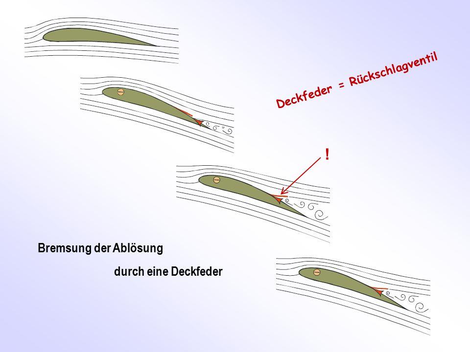 Bremsung der Ablösung durch eine Deckfeder ! Deckfeder = Rückschlagventil