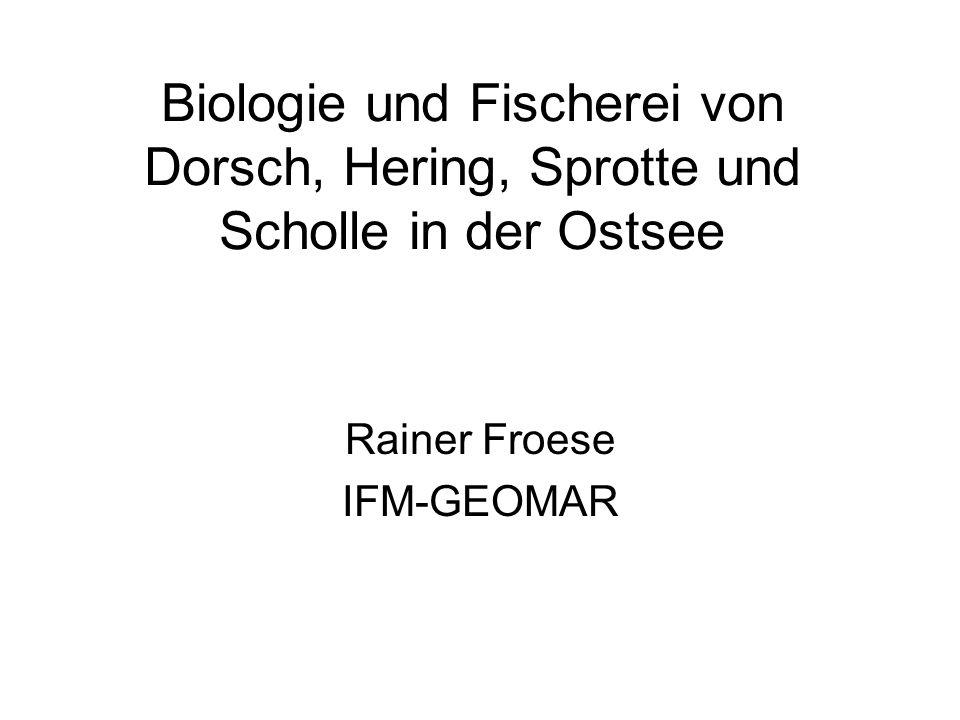 Biologie und Fischerei von Dorsch, Hering, Sprotte und Scholle in der Ostsee Rainer Froese IFM-GEOMAR