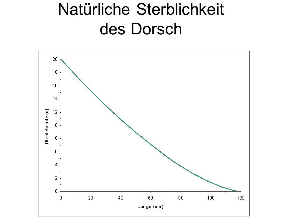 Schollenfänge in der westlichen Ostsee ICES: Keine ausreichenden Daten, um Bestandsgröße abzuschätzen EC Vorschlag für 2008: 3 201 Tonnen (-15%)