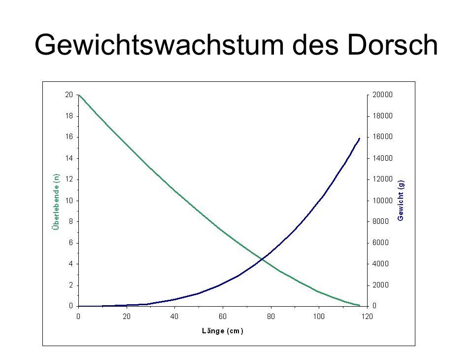 Jahrgangswachstum des Dorsch Anzahl Gewicht Biomasse