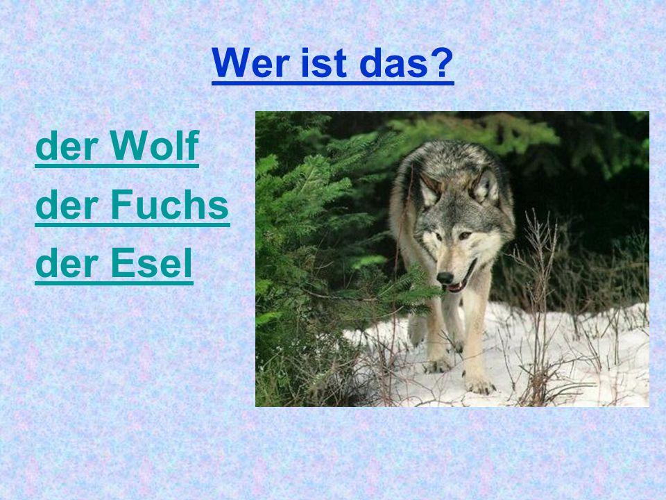 Wer ist das? der Wolf der Fuchs der Esel