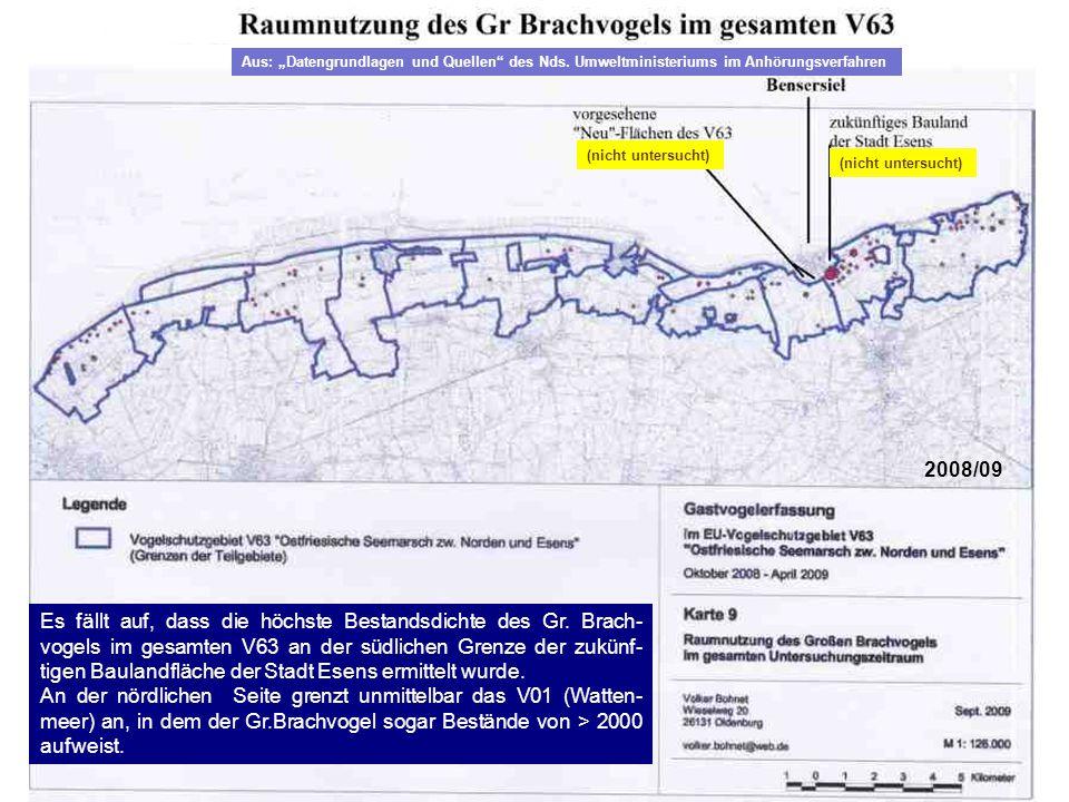 (nicht untersucht) Es fällt auf, dass die höchste Bestandsdichte des Gr. Brach- vogels im gesamten V63 an der südlichen Grenze der zukünf- tigen Baula