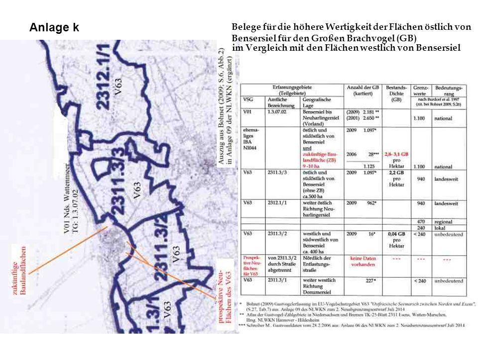 Belege für die höhere Wertigkeit der Flächen östlich von Bensersiel für den Großen Brachvogel (GB) im Vergleich mit den Flächen westlich von Bensersie