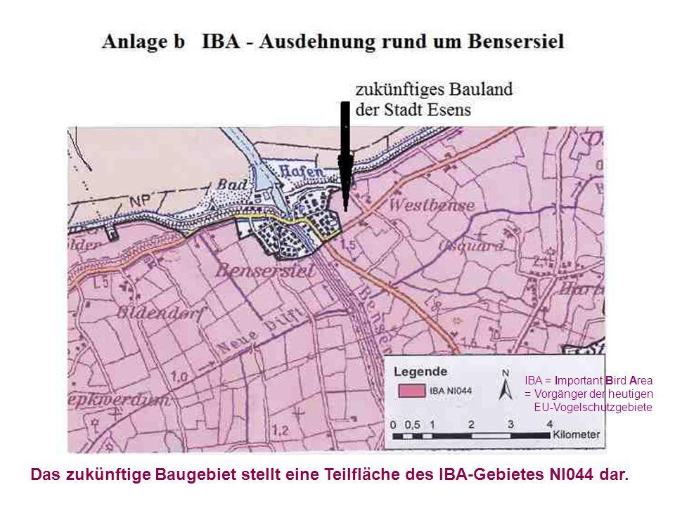 Das zukünftige Baugebiet stellt eine Teilfläche des IBA-Gebietes NI044 dar. IBA = Important Bird Area = Vorgänger der heutigen EU-Vogelschutzgebiete