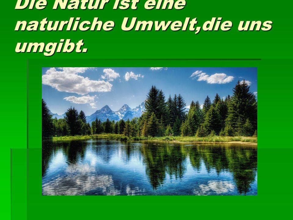 Die Natur ist eine naturliche Umwelt,die uns umgibt.