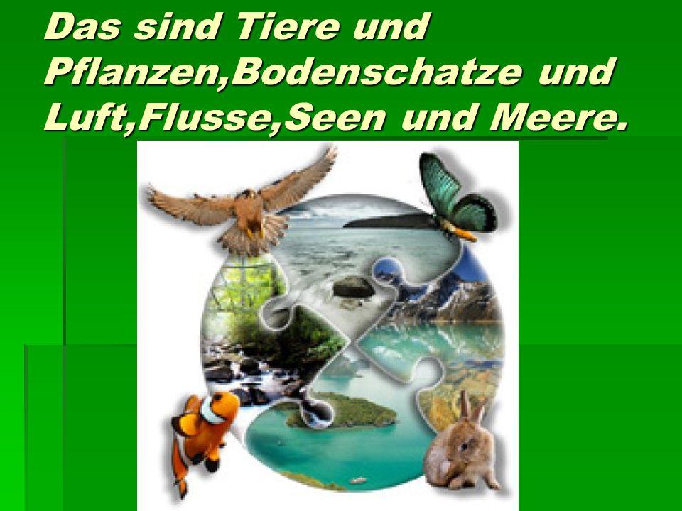 Das sind Tiere und Pflanzen,Bodenschatze und Luft,Flusse,Seen und Meere.