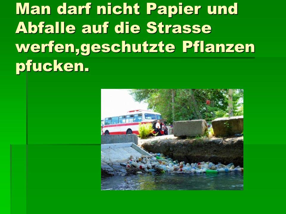 Man darf nicht Papier und Abfalle auf die Strasse werfen,geschutzte Pflanzen pfucken.