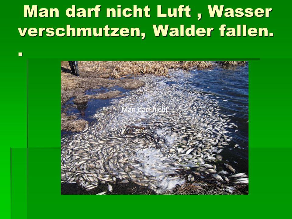 Man darf nicht Luft, Wasser verschmutzen, Walder fallen..