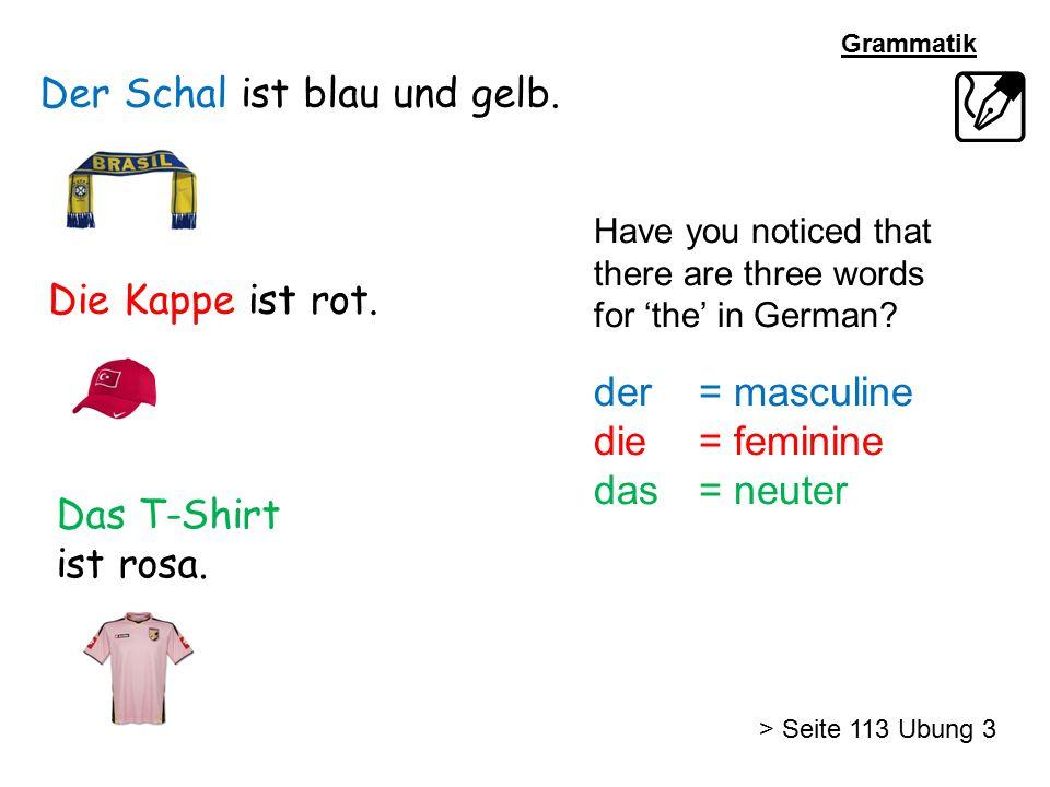Der Schal ist blau und gelb. Die Kappe ist rot. Das T-Shirt ist rosa. Have you noticed that there are three words for 'the' in German? der= masculine