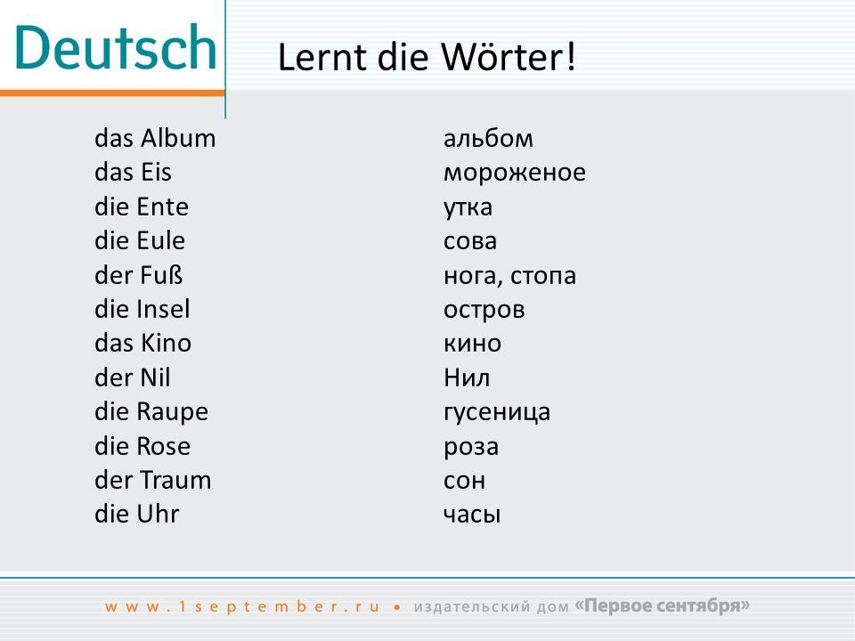 Deutsch für Anfänger Rätsel