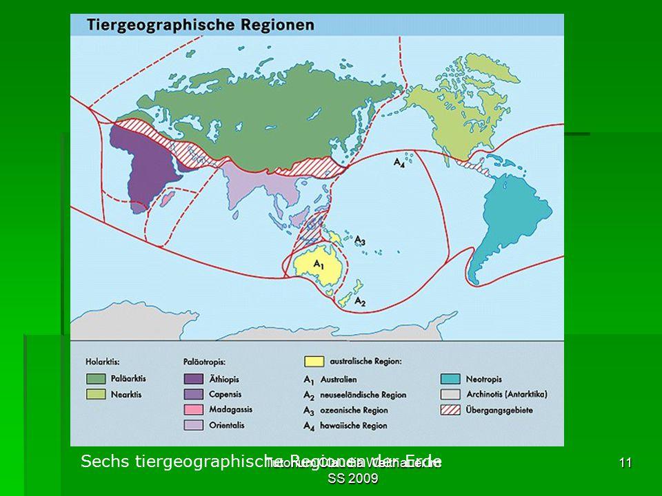 Tutorium Claudia Weitnauer im SS 2009 11 Sechs tiergeographische Regionen der Erde