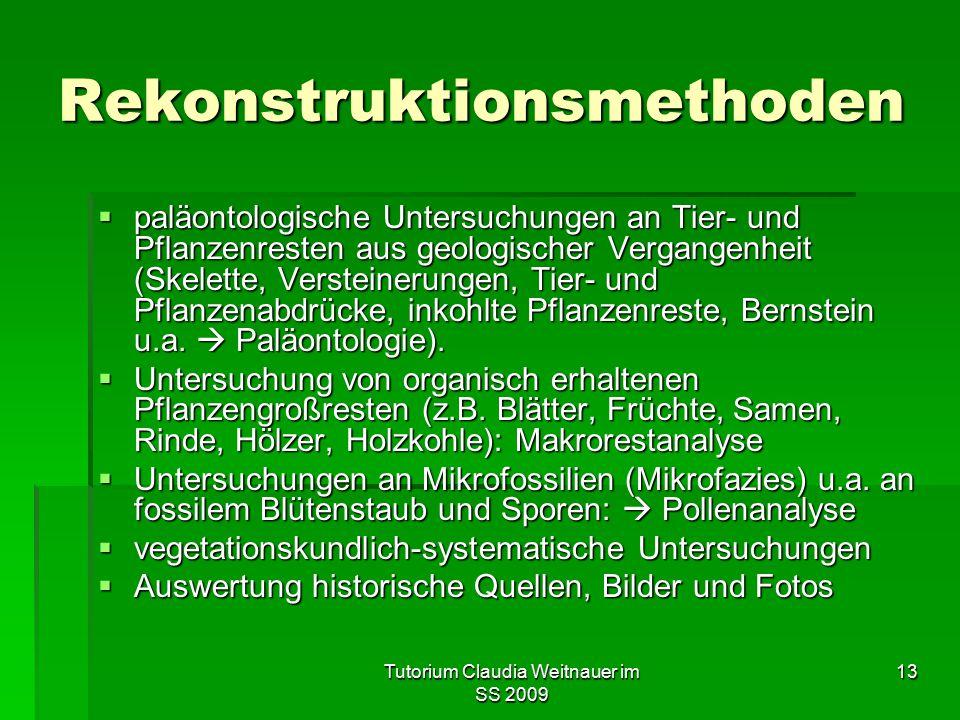 Tutorium Claudia Weitnauer im SS 2009 13 Rekonstruktionsmethoden  paläontologische Untersuchungen an Tier- und Pflanzenresten aus geologischer Vergan