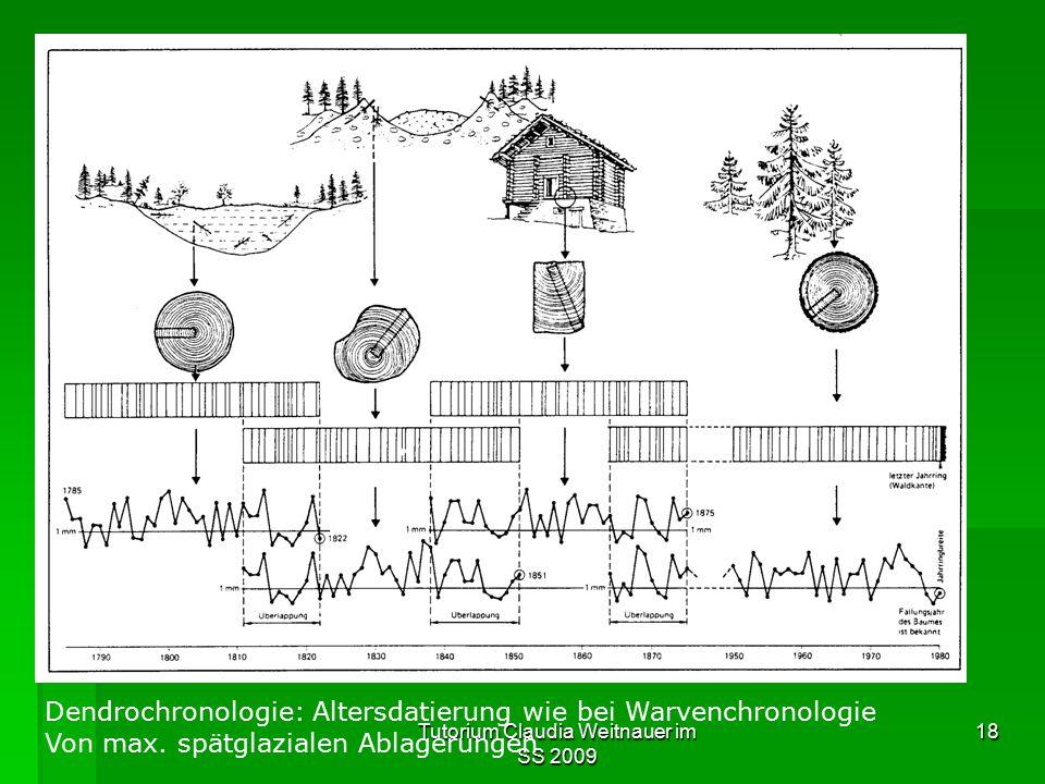 Tutorium Claudia Weitnauer im SS 2009 18 Dendrochronologie: Altersdatierung wie bei Warvenchronologie Von max. spätglazialen Ablagerungen