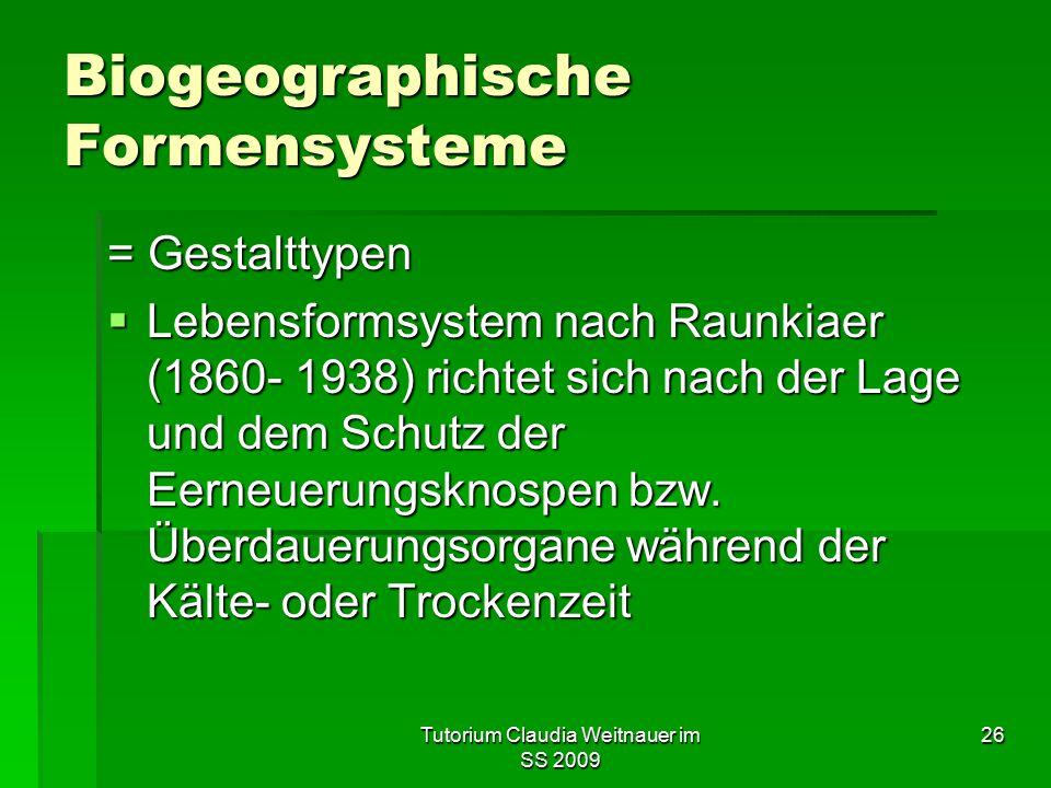 Tutorium Claudia Weitnauer im SS 2009 26 Biogeographische Formensysteme = Gestalttypen  Lebensformsystem nach Raunkiaer (1860- 1938) richtet sich nac