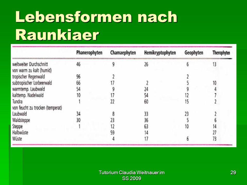 Tutorium Claudia Weitnauer im SS 2009 29 Lebensformen nach Raunkiaer