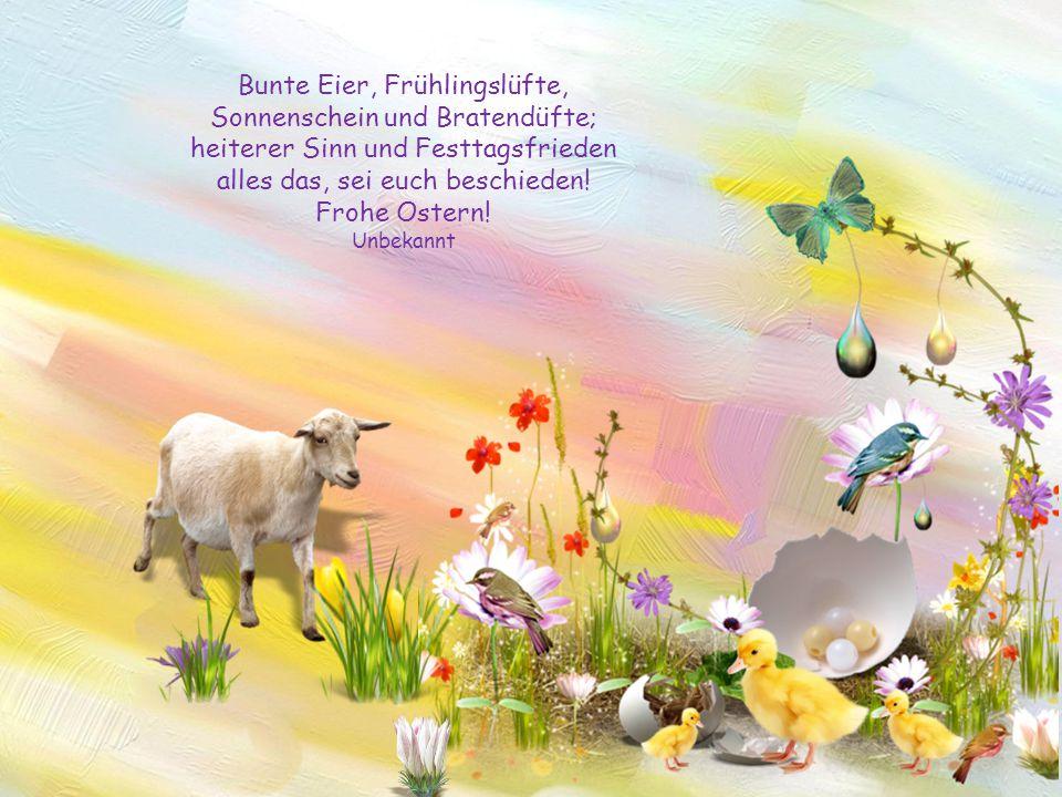 Alles Gute, nur das Beste, gerade jetzt zum Osterfeste! Möge es vor allen Dingen: Freude und Entspannung bringen! Unbekannt