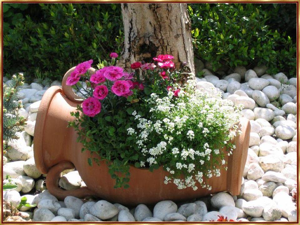 Blumen machen die Menschen fröhlicher, glücklicher und hilfsbereiter.
