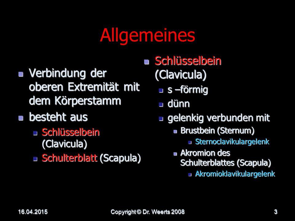DER SCHULTERGÜRTEL 16.04.2015Copyright © Dr. Weerts 20082