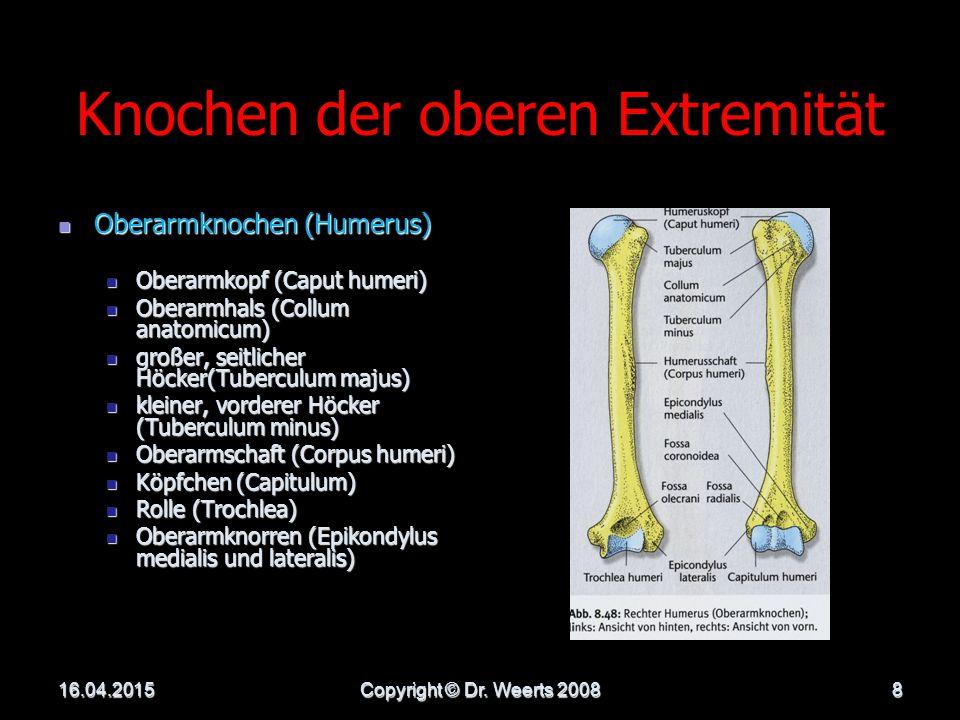 DIE OBERE EXTREMITÄT 16.04.2015Copyright © Dr. Weerts 20087