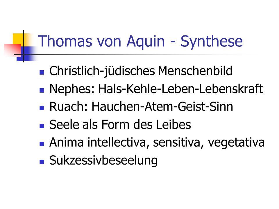 Thomas von Aquin - Synthese Christlich-jüdisches Menschenbild Nephes: Hals-Kehle-Leben-Lebenskraft Ruach: Hauchen-Atem-Geist-Sinn Seele als Form des Leibes Anima intellectiva, sensitiva, vegetativa Sukzessivbeseelung