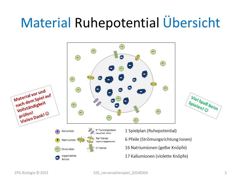 Material Ruhepotential Vorlagen + + ++ + + + + ++ + + ++ + + + + ++ ++++++++++ ++++++++++ K+K+ Na + Kalium-Natrium-Pumpe 335_nervenzellenspiel_20140304ZPG Biologie © 20133
