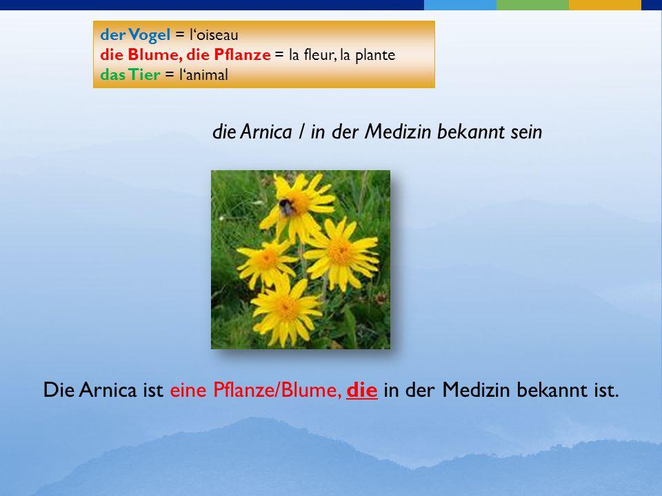 der Vogel = l'oiseau die Blume, die Pflanze = la fleur, la plante das Tier = l'animal der Vogel = l'oiseau die Blume, die Pflanze = la fleur, la plant