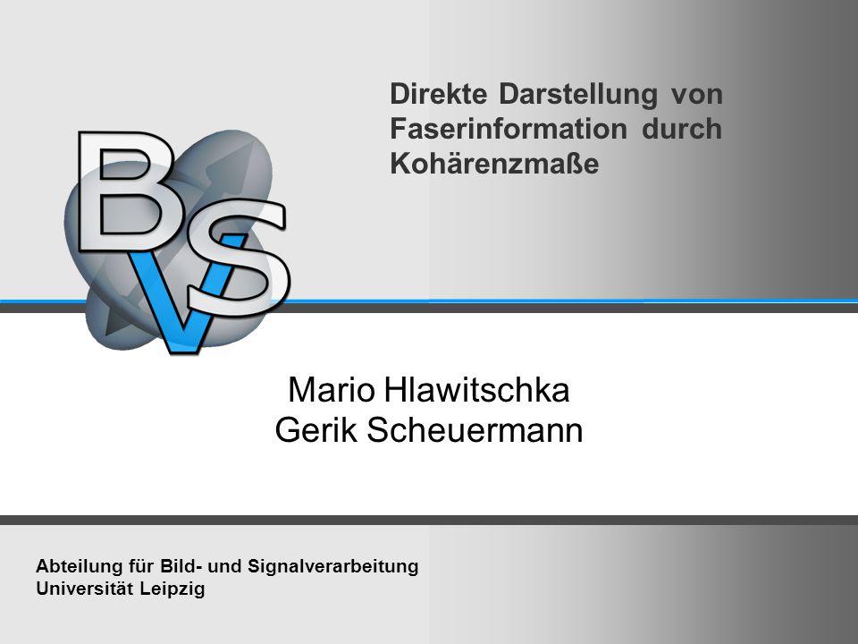 Direkte Darstellung von Faserinformation durch Kohärenzmaße Mario Hlawitschka Gerik Scheuermann Abteilung für Bild- und Signalverarbeitung Universität