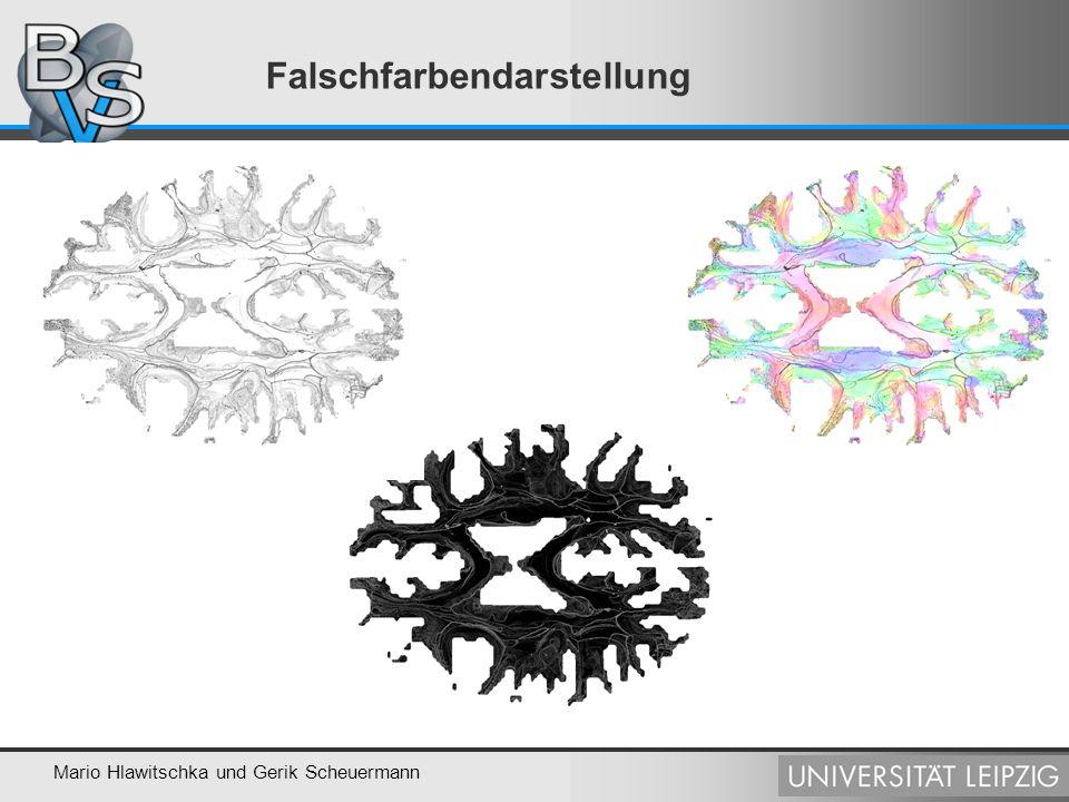 Mario Hlawitschka und Gerik Scheuermann Falschfarbendarstellung