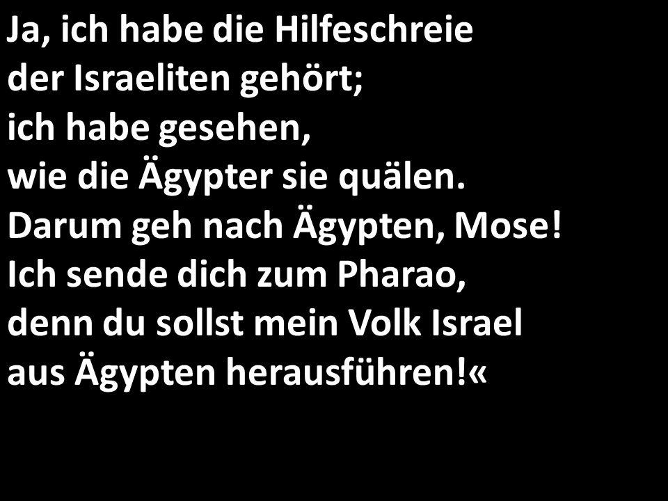 Ja, ich habe die Hilfeschreie der Israeliten gehört; ich habe gesehen, wie die Ägypter sie quälen. Darum geh nach Ägypten, Mose! Ich sende dich zum Ph