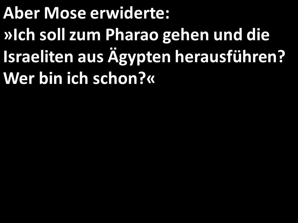 Aber Mose erwiderte: »Ich soll zum Pharao gehen und die Israeliten aus Ägypten herausführen? Wer bin ich schon?«