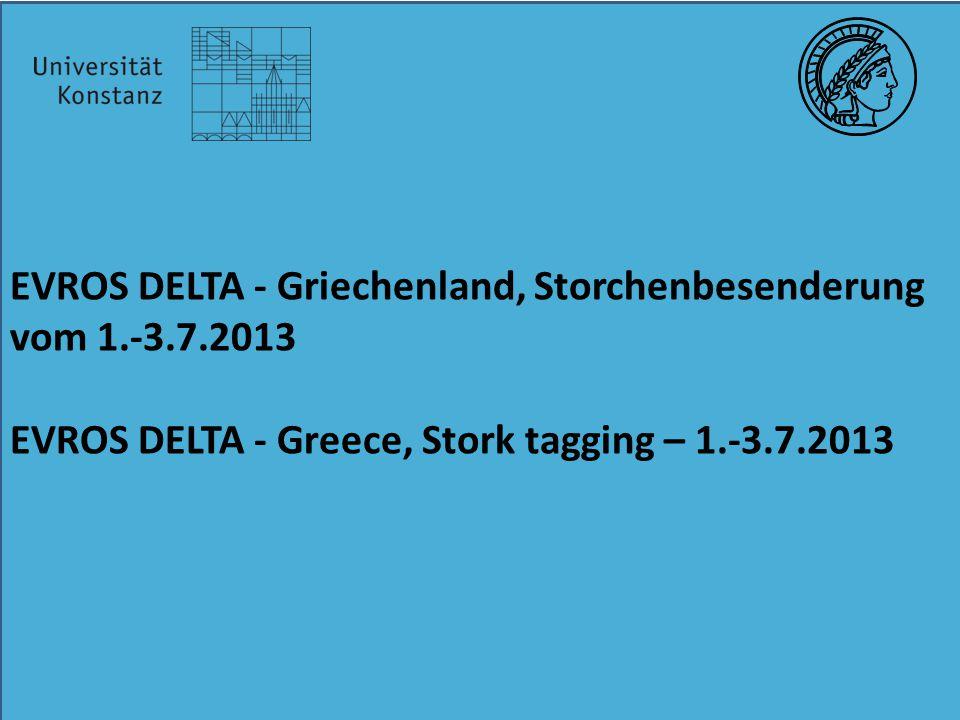 EVROS DELTA - Griechenland, Storchenbesenderung vom 1.-3.7.2013 EVROS DELTA - Greece, Stork tagging – 1.-3.7.2013