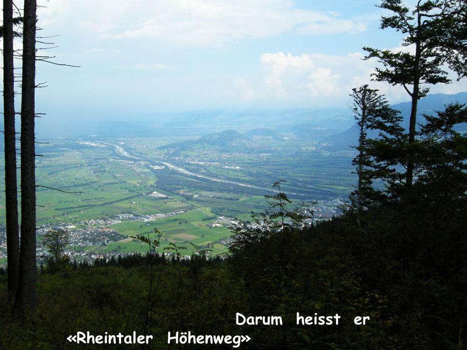 Darum heisst er «Rheintaler Höhenweg»